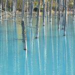 神秘的な美しさ!コバルトブルーの青い池4選。