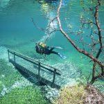 雪解け水が創る幻想的な世界!水中公園「グリーンレイク」