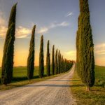 牧歌的な景色に癒されたい!南トスカーナの美しい田舎街『オルチャ渓谷』