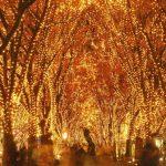 無数のキラメキが仙台を彩る『2014 SENDAI光のページェント』が12月12日~12月31日に開催!