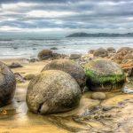 海岸に現れた謎の丸い物体。ニュージーランドの『モエラキ・ボルダー』