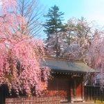 春夏秋冬訪れたい日本の名所!みちのくの小京都『角館』
