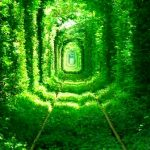毎日忙しいあなたへ贈る!思わず見惚れてしまう緑の絶景10選。