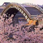 春夏秋冬訪れたい日本の名所!日本三名橋の一つ『錦帯橋』
