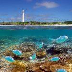 サンゴ礁が創りだした芸術品!ニューカレドニアの『アメデ島』