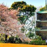 GWを楽しもう!関東近郊で楽しめる無料観光スポット10選。