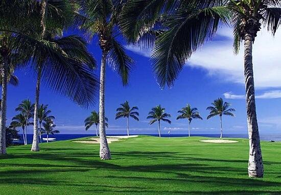 20150530-377-14-Island of Hawaii-hotel