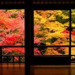 【保存版】秋の京都で絶対行きたい!京都の紅葉の名所30選。