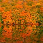 【保存版】紅葉に染まる秋の東北!東北の紅葉の名所25選。