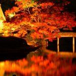 東京で紅葉狩りはいかがですか?この秋行きたい東京の紅葉スポット12選。