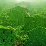 緑に覆い尽くされたゴーストタウン。ラピュタの世界のような無人島