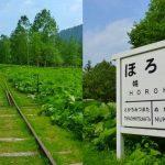 北海道の森に静かに眠る廃線跡!上士幌町『旧幌加駅跡』の哀愁漂う姿。