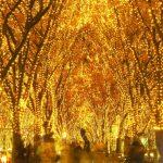 冬の仙台が無数のキラメキに包まれる!『2015 SENDAI光のページェント』が開催