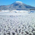 冬だけの絶景!阿寒湖に咲く氷の花『フロストフラワー』が美しい。