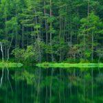 どの季節も美しい絶景の池!長野県の『御射鹿池』