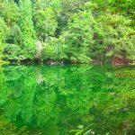 絶対に濁らない超透明な池。新潟県の『竜ヶ窪(りゅうがくぼ)』が美しい。