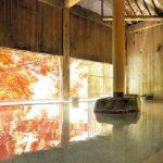 憧れの高級宿!水上温泉でおすすめの人気旅館7選。