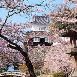 春だ!桜だ!お花見だ!今年も行きたい桜の名所【九州・沖縄編】