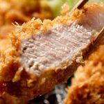 新宿で美味しい「とんかつ(トンカツ)」なら!おすすめの人気店10選