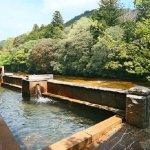 癒しの温泉宿!湯谷温泉でおすすめの人気旅館5選
